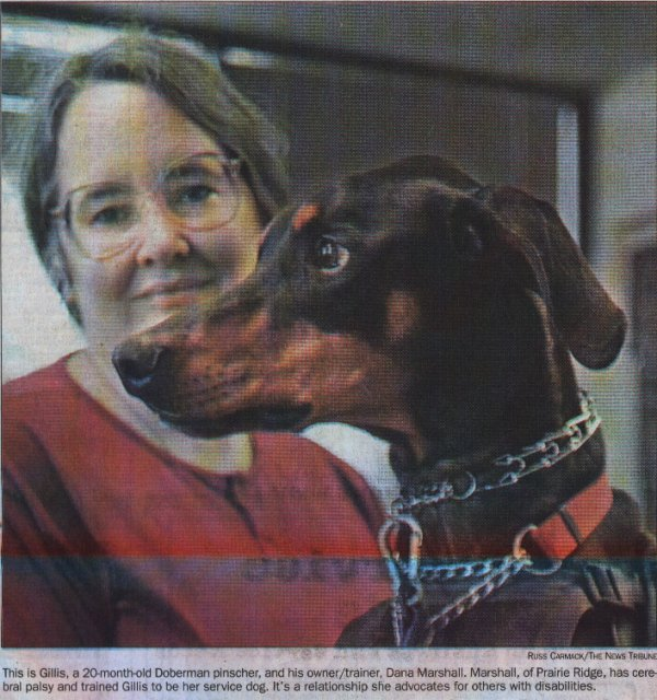 This is Gillis, a 20 month old Doberman Pinscher, and his owner/trainer, Dana Marshall. Marshall, of Prairie Ridge, has Cerebral Palsy and has trained Gillis to be her service dog. It's a relationship she advocates for others with disabilities.
